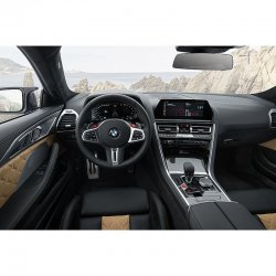 BMW 8 Series (2018) Grand Coupe - Creating patterns of car body and interior. Sale of templates in electronic form for cutting on pain protection film on a plotter